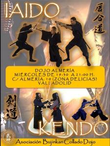 Clases de Iaido y Kendo en Valladolid